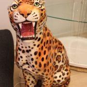leopard60