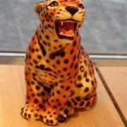 leopard_30