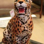leopard_45
