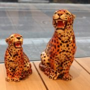leopard_samlet