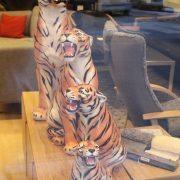 tiger-familien