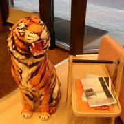 tiger_gigante-2