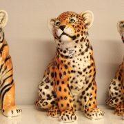 tiger_leopard